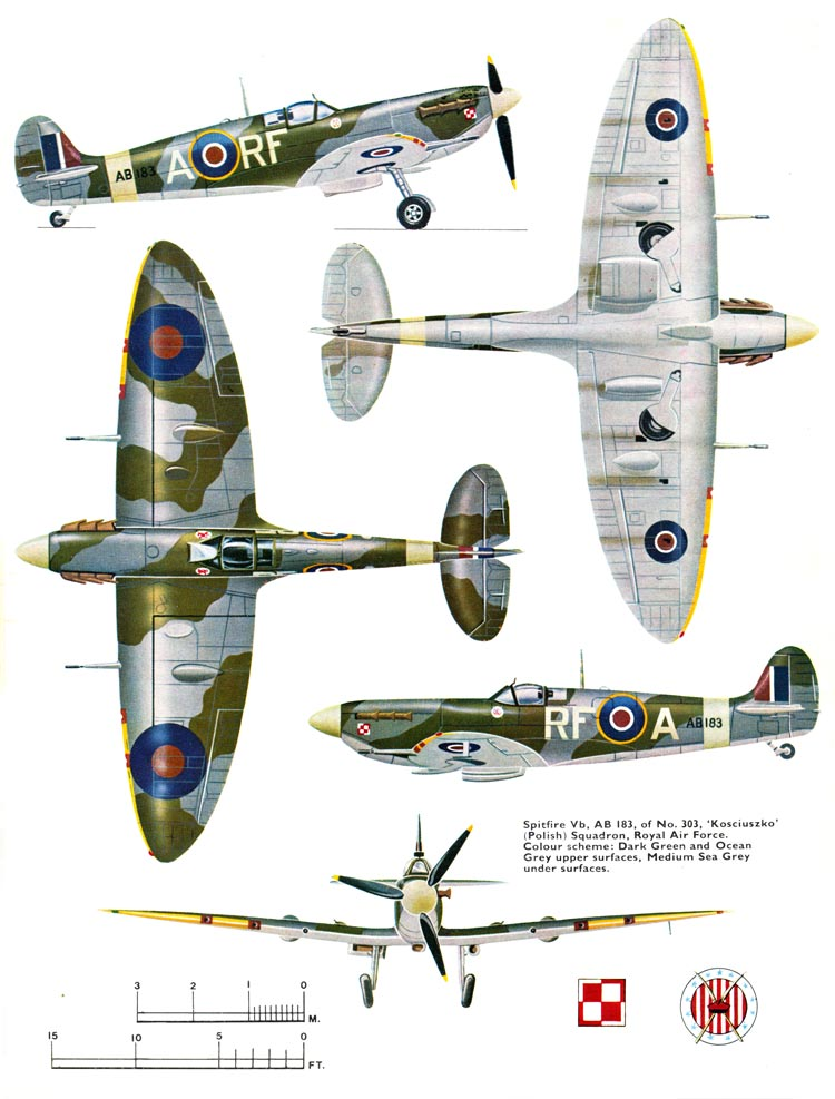 Polish Supermarine Spitfire